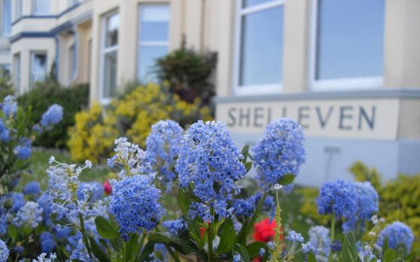 Shelleven Guest House